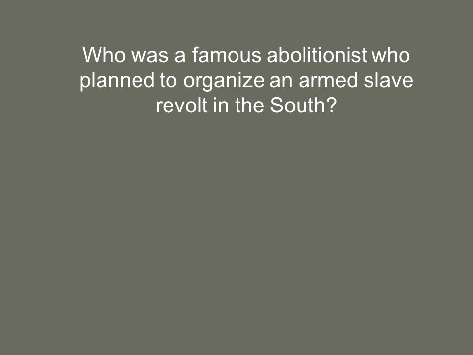Who was a famous abolitionist who planned to organize an armed slave revolt in the South