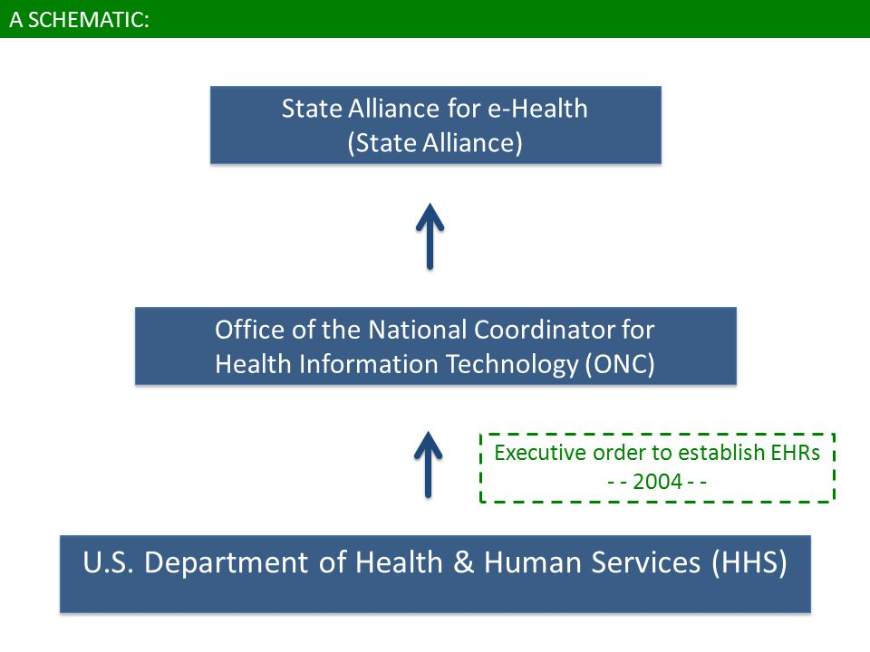 State Alliance for e-Health (State Alliance) Office of the National Coordinator for Health Information Technology (ONC) U.S.