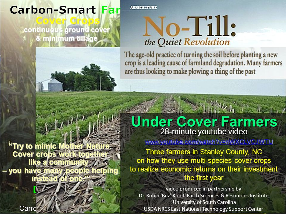 Identical to farms from Ohio to Nebraska – vast fields of corn & soybeans Summer : industrial-scale agriculture Winter Neighbors' fields lie fallow – bare & brown Brandt's fields are green with cover crops Fall plantings with up to 14 plant species – – blanket soil in winter – protect soil from extreme weather – feed sugar to soil microbes – support biological diversity & complexity – rot in place in spring : no-till, cover crop agriculture Half Brandt's corn & soy flourish without fertilizer, and no herbicides; Other half gets less than consultants recommend Promise of no-till, cover-crop Farming Reduce agrichemical use Regenerate soil food web biology Adapt to extreme weather & climate Keep heartland churning out food David Brandt 1,200 acre farm Carroll, central Ohio (pop.