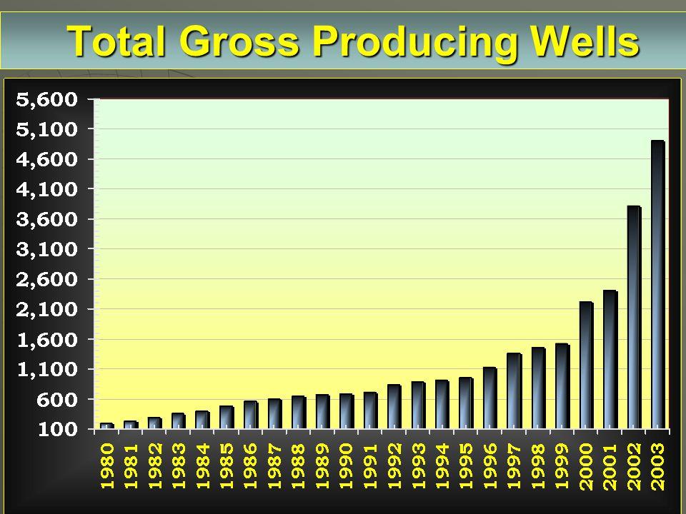 Total Gross Producing Wells Total Gross Producing Wells