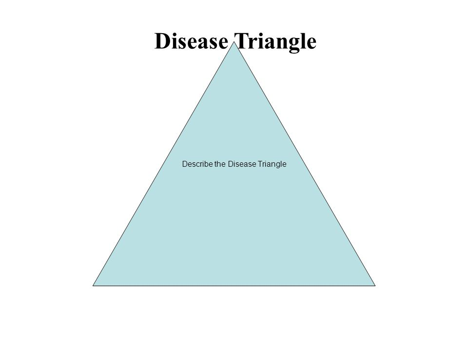 Host Pathogen Environment Disease Disease Triangle Describe the Disease Triangle