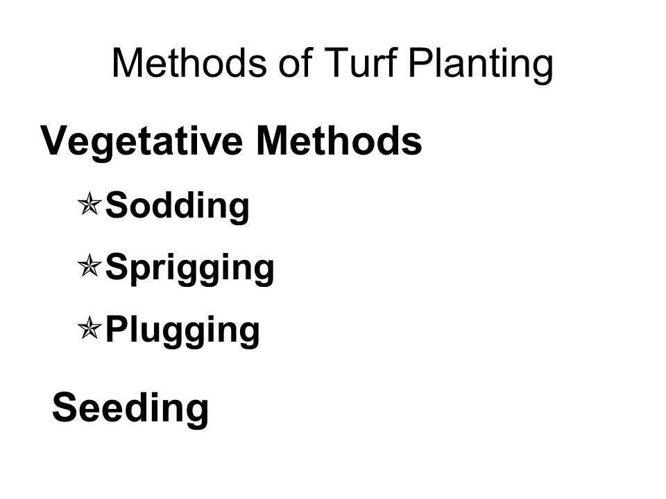 Methods of Turf Planting Vegetative Methods  Sodding  Sprigging  Plugging Seeding