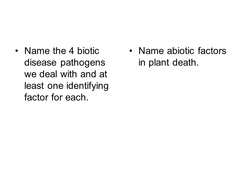 Name the 4 biotic disease pathogens we deal with and at least one identifying factor for each.