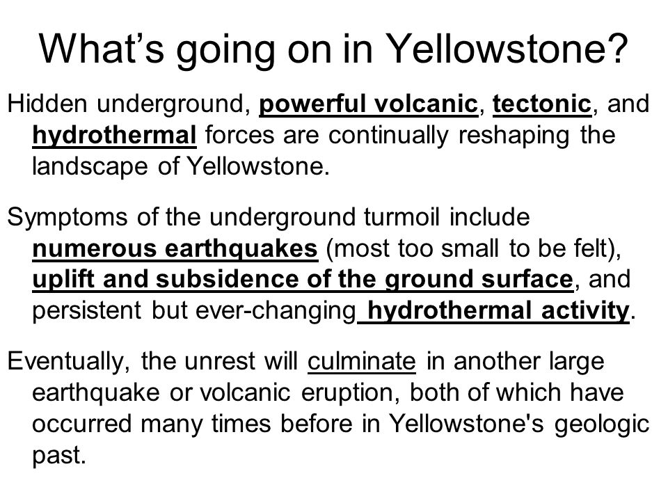 What's going on in Yellowstone.