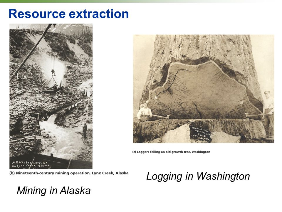 Mining in Alaska Resource extraction Logging in Washington