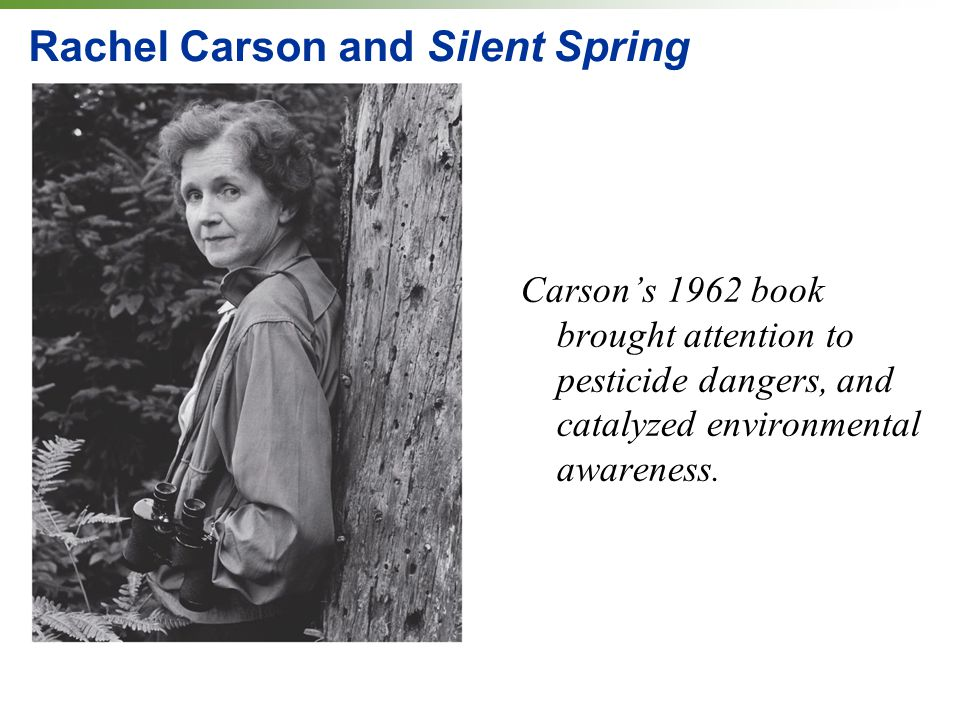 Rachel Carson and Silent Spring Carson's 1962 book brought attention to pesticide dangers, and catalyzed environmental awareness.