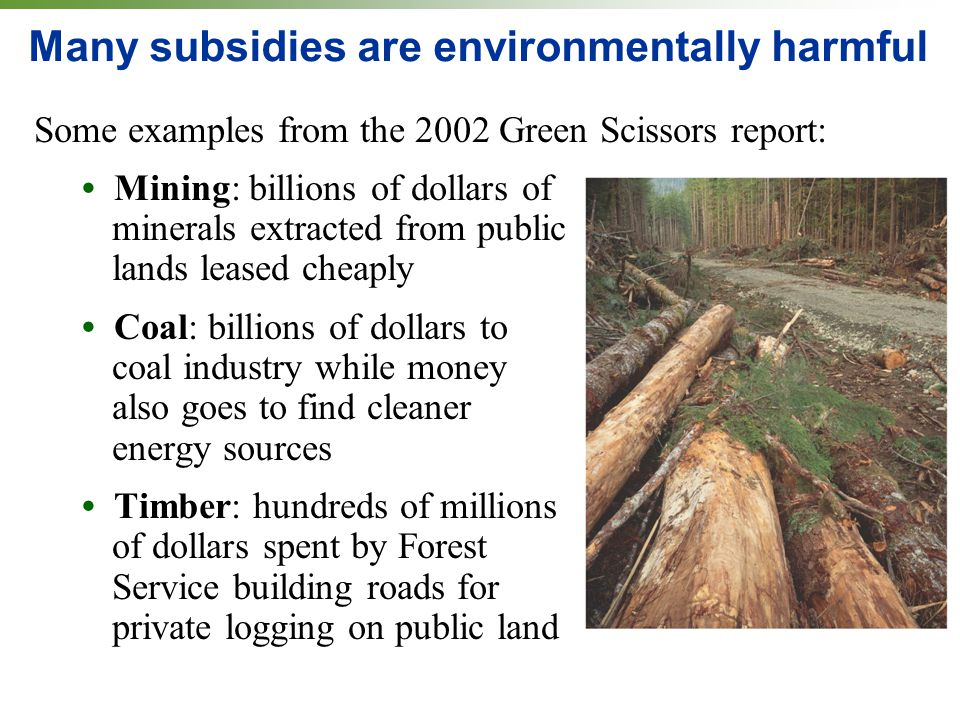 Many subsidies are environmentally harmful Some examples from the 2002 Green Scissors report: Mining: billions of dollars of minerals extracted from public lands leased cheaply Coal: billions of dollars to coal industry while money also goes to find cleaner energy sources Timber: hundreds of millions of dollars spent by Forest Service building roads for private logging on public land