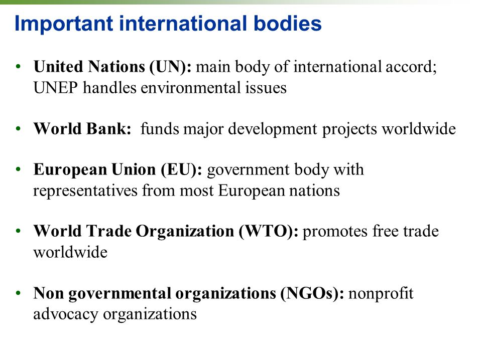 Important international bodies United Nations (UN): main body of international accord; UNEP handles environmental issues World Bank: funds major development projects worldwide European Union (EU): government body with representatives from most European nations World Trade Organization (WTO): promotes free trade worldwide Non governmental organizations (NGOs): nonprofit advocacy organizations
