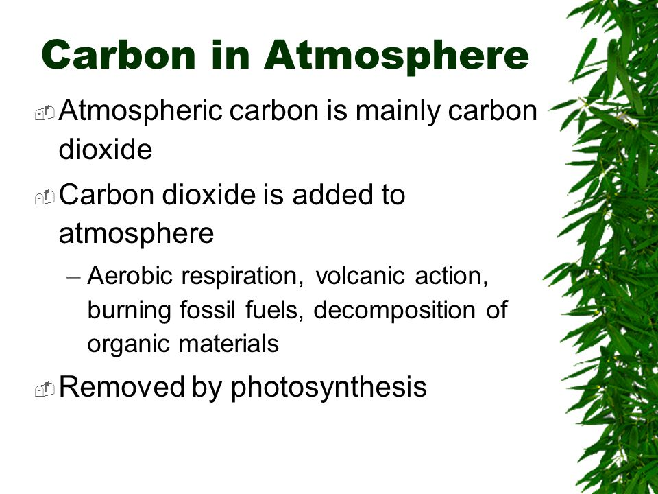 Carbon in Atmosphere  Atmospheric carbon is mainly carbon dioxide  Carbon dioxide is added to atmosphere –Aerobic respiration, volcanic action, burning fossil fuels, decomposition of organic materials  Removed by photosynthesis