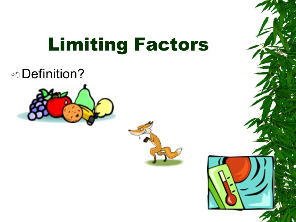 Limiting Factors  Definition