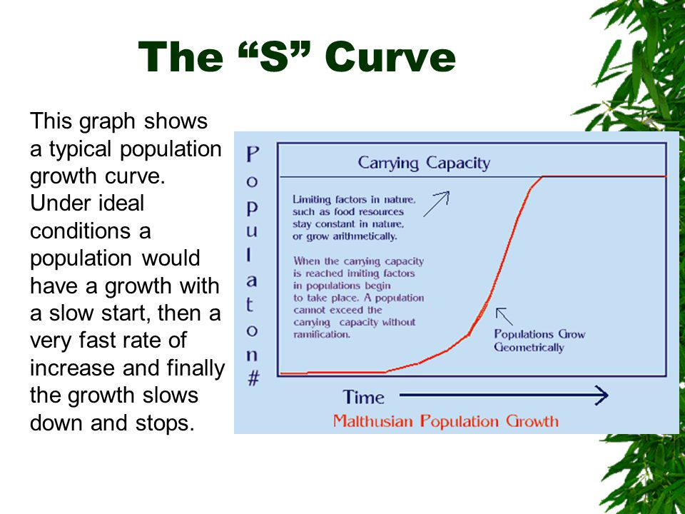 The S Curve This graph shows a typical population growth curve.