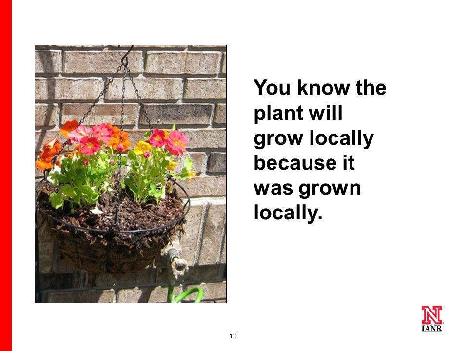 10 You know the plant will grow locally because it was grown locally.