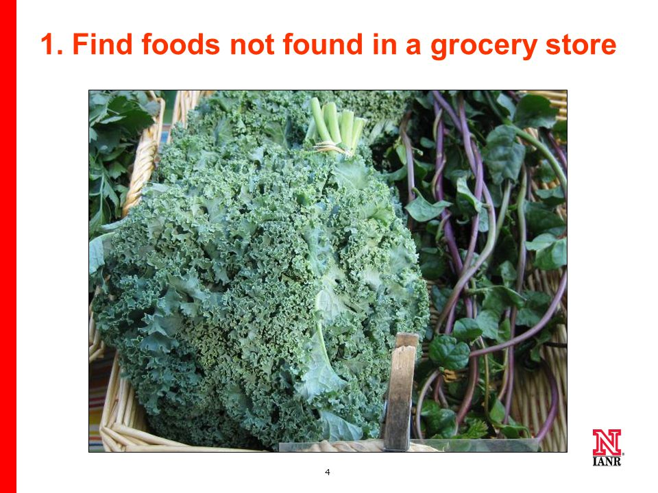 4 1. Find foods not found in a grocery store