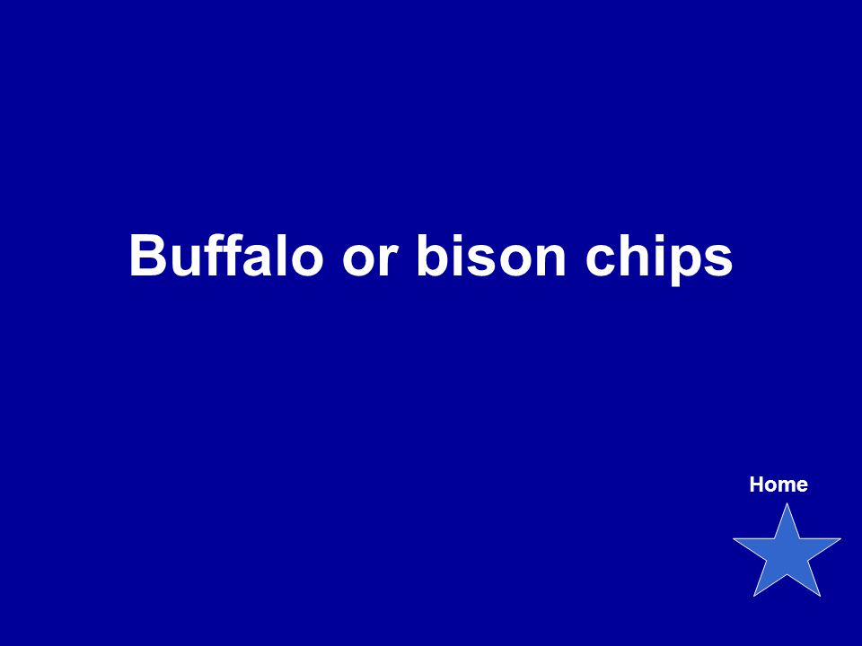 Buffalo or bison chips Home