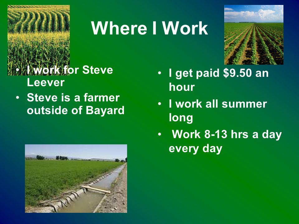 Where I Work I work for Steve Leever Steve is a farmer outside of Bayard I get paid $9.50 an hour I work all summer long Work 8-13 hrs a day every day