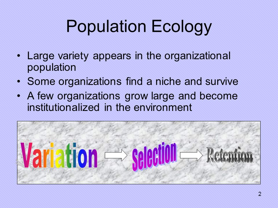 2 Population Ecology Large variety appears in the organizational population Some organizations find a niche and survive A few organizations grow large and become institutionalized in the environment