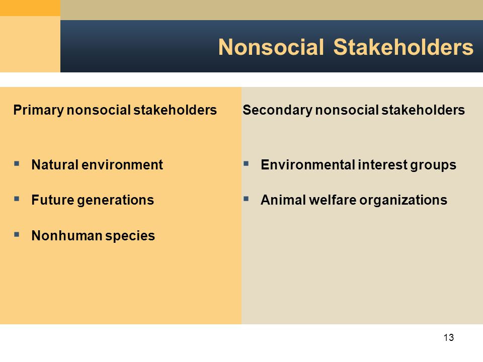 13 Nonsocial Stakeholders Primary nonsocial stakeholders  Natural environment  Future generations  Nonhuman species Secondary nonsocial stakeholders  Environmental interest groups  Animal welfare organizations
