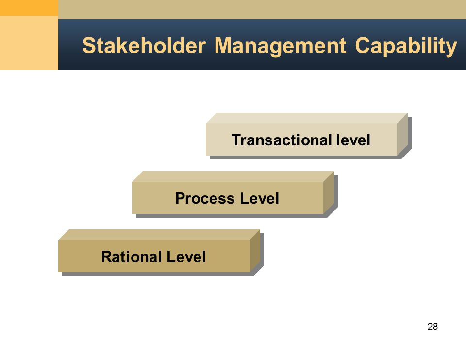 28 Stakeholder Management Capability Transactional level Process Level Rational Level