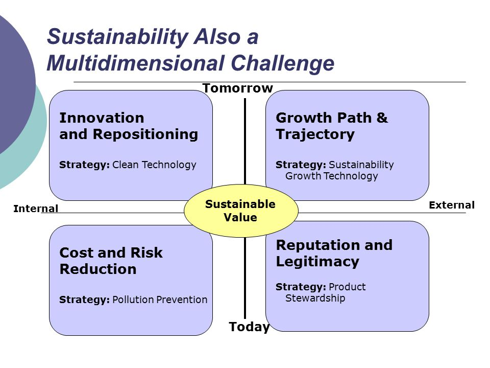 Sustainability Also a Multidimensional Challenge Innovation and Repositioning Strategy: Clean Technology Today Tomorrow Internal External Growth Path & Trajectory Strategy: Sustainability Growth Technology Cost and Risk Reduction Strategy: Pollution Prevention Reputation and Legitimacy Strategy: Product Stewardship Sustainable Value