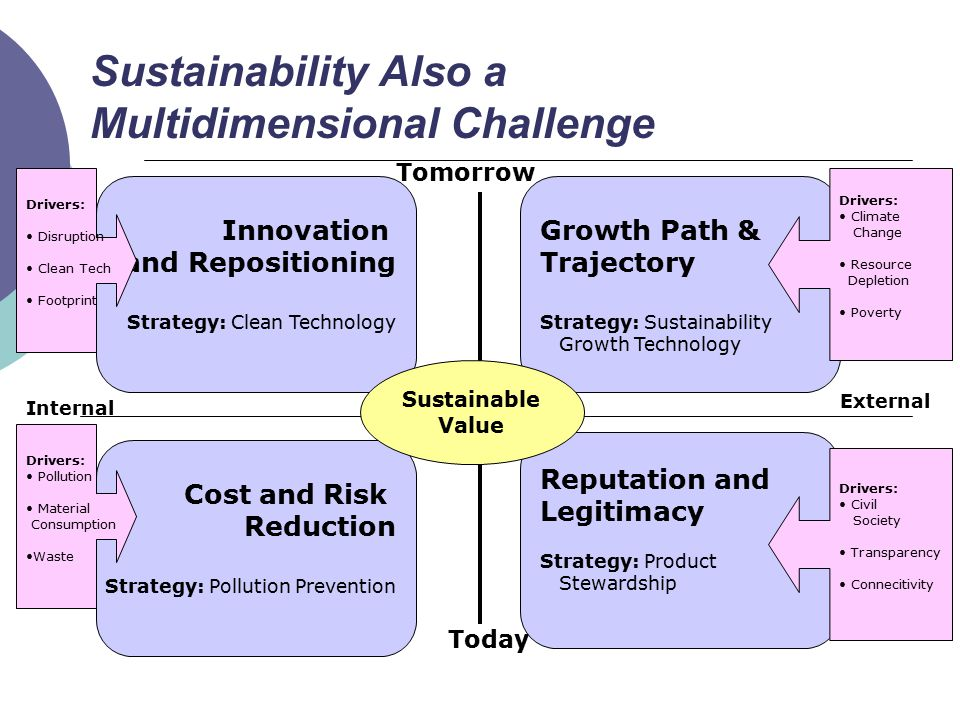Sustainability Also a Multidimensional Challenge Innovation and Repositioning Strategy: Clean Technology Today Tomorrow Internal External Growth Path & Trajectory Strategy: Sustainability Growth Technology Cost and Risk Reduction Strategy: Pollution Prevention Reputation and Legitimacy Strategy: Product Stewardship Sustainable Value Drivers: Pollution Material Consumption Waste Drivers: Disruption Clean Tech Footprint Drivers: Climate Change Resource Depletion Poverty Drivers: Civil Society Transparency Connecitivity