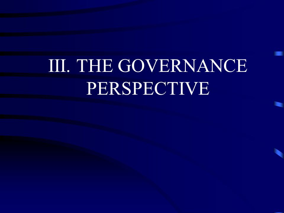 III. THE GOVERNANCE PERSPECTIVE