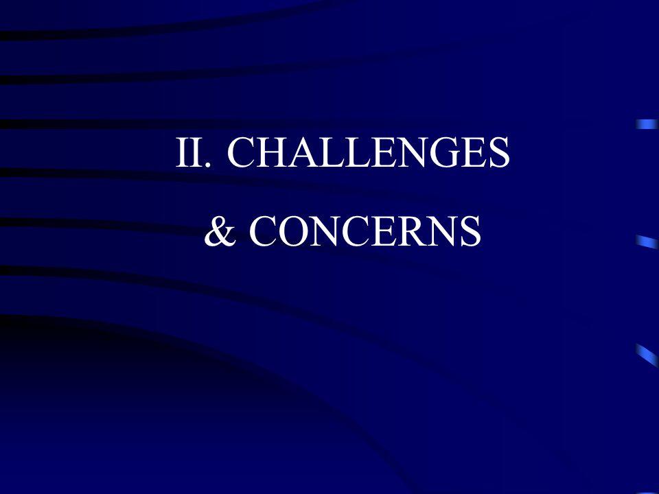 II. CHALLENGES & CONCERNS