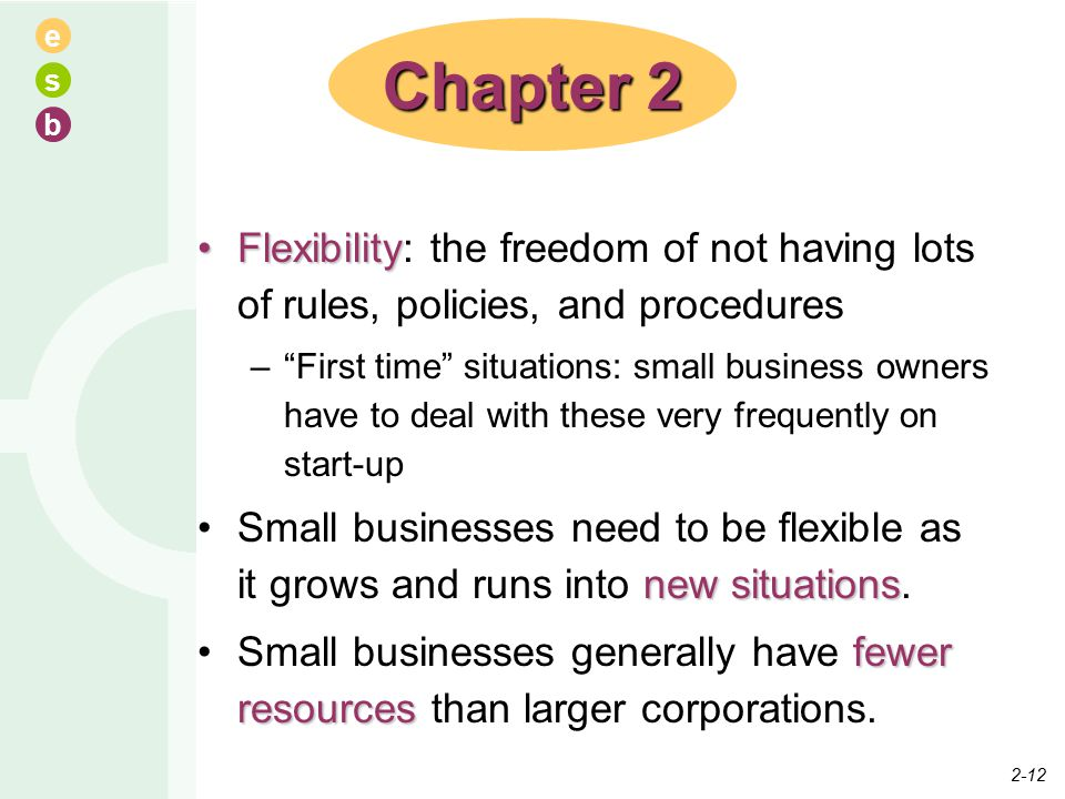 e s b FlexibilityFlexibility: the freedom of not having lots of rules, policies, and procedures – First time situations: small business owners have to deal with these very frequently on start-up new situationsSmall businesses need to be flexible as it grows and runs into new situations.