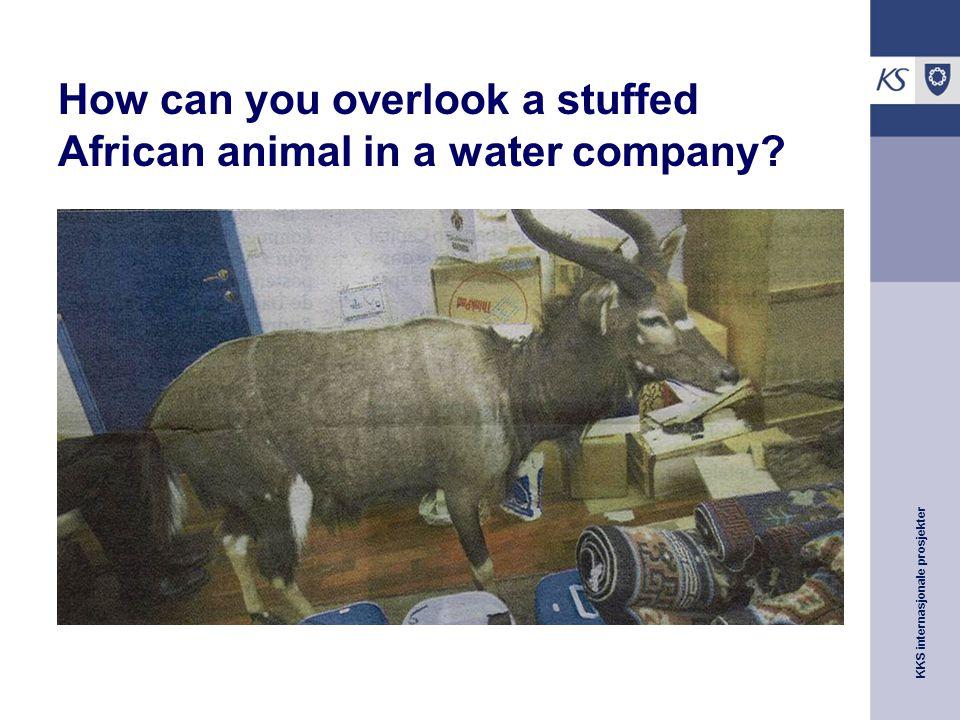 KKS internasjonale prosjekter How can you overlook a stuffed African animal in a water company