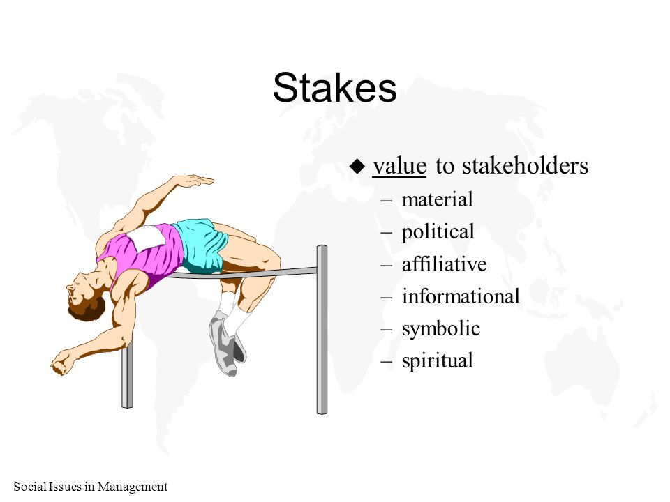 Social Issues in Management Stakes u value to stakeholders –material –political –affiliative –informational –symbolic –spiritual