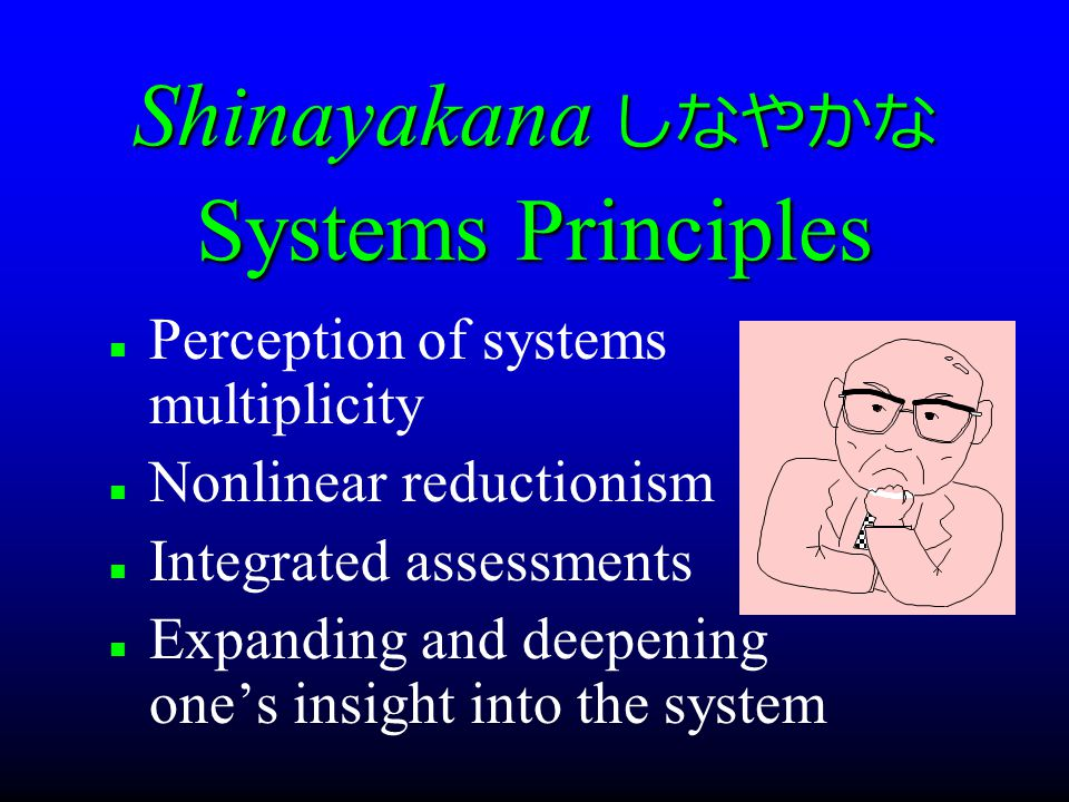 Shinayakana しなやかな Systems Principles Perception of systems multiplicity Nonlinear reductionism Integrated assessments Expanding and deepening one's insight into the system
