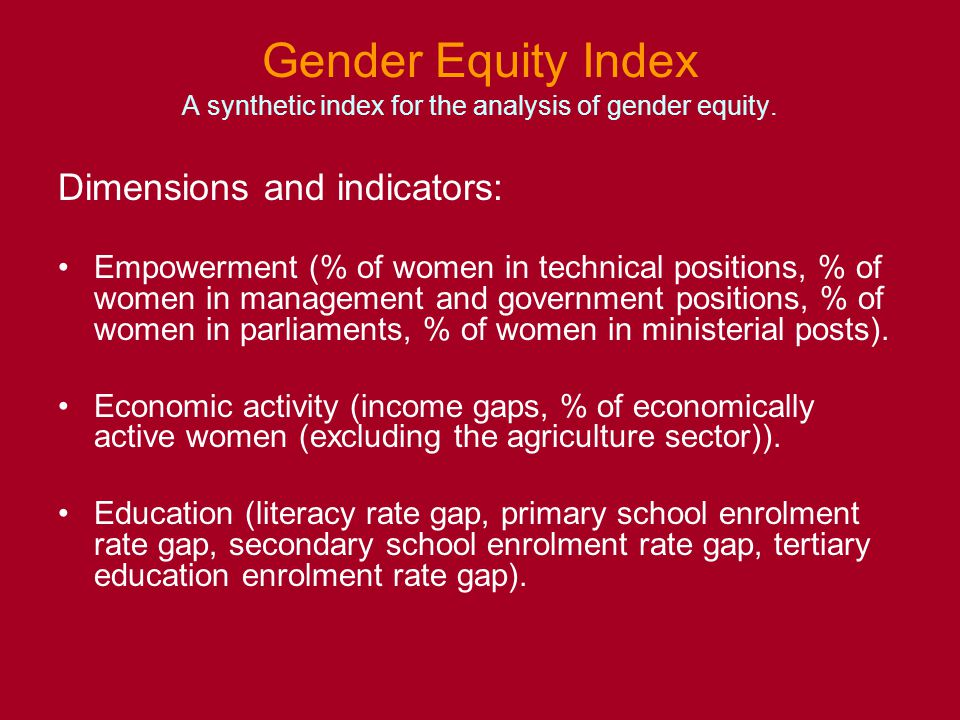 Gender Equity Index A synthetic index for the analysis of gender equity.