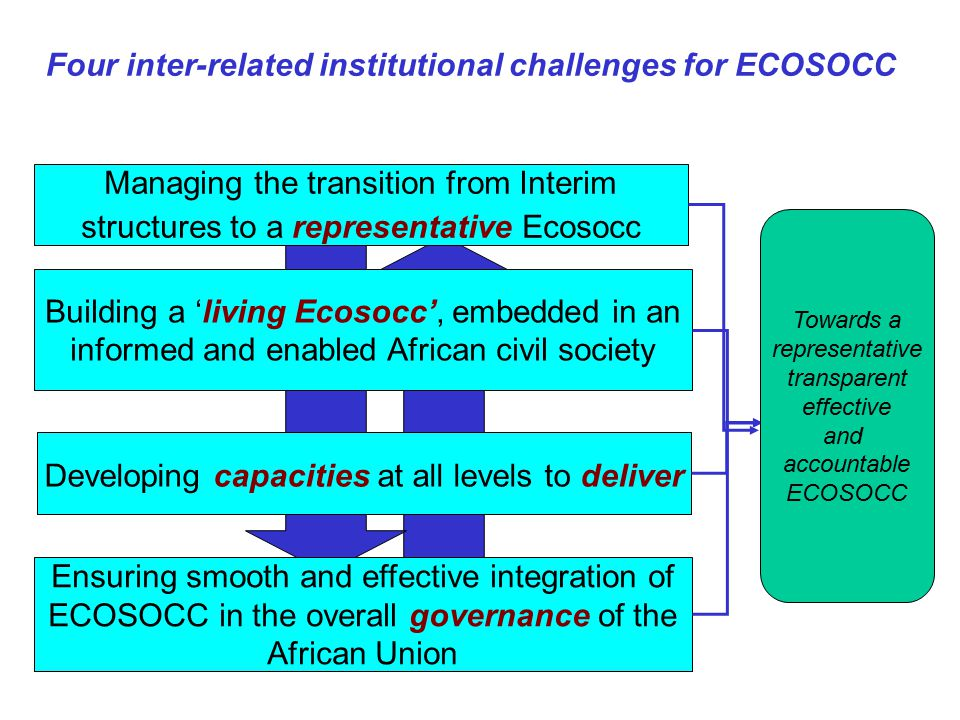 Four inter-related institutional challenges for ECOSOCC Building a 'living Ecosocc', embedded in an informed and enabled African civil society Developing capacities at all levels to deliver Ensuring smooth and effective integration of ECOSOCC in the overall governance of the African Union Managing the transition from Interim structures to a representative Ecosocc Towards a representative transparent effective and accountable ECOSOCC
