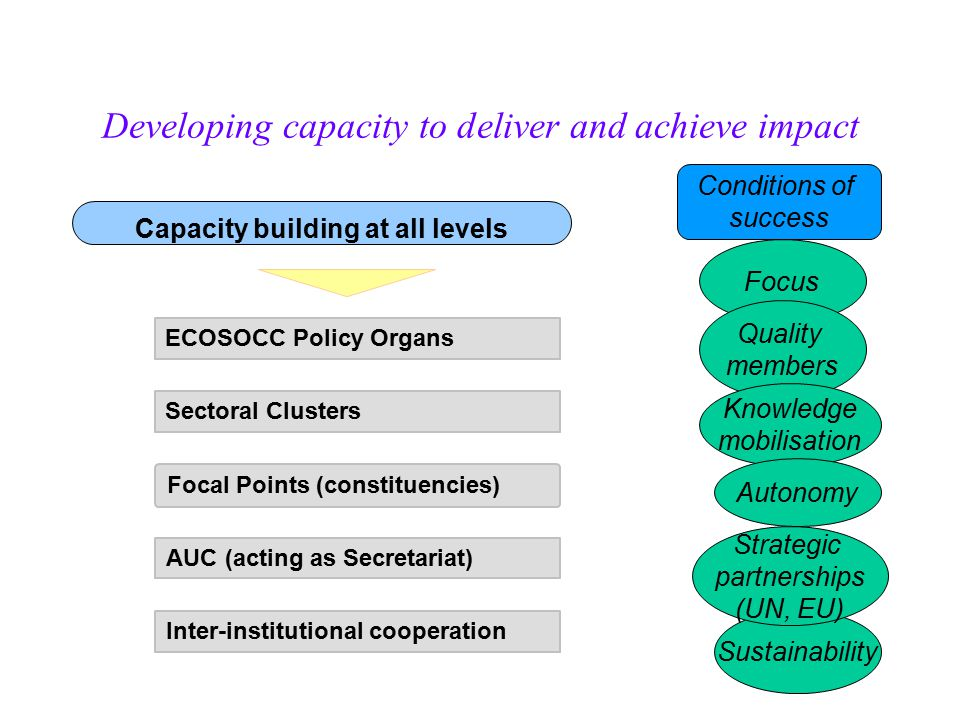 Developing capacity to deliver and achieve impact Focus Conditions of success Quality members Knowledge mobilisation Capacity building at all levels ECOSOCC Policy Organs Sectoral Clusters Focal Points (constituencies) AUC (acting as Secretariat) Inter-institutional cooperation Sustainability Strategic partnerships (UN, EU) Autonomy