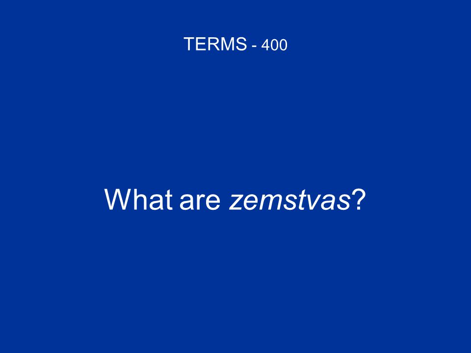 TERMS - 400 What are zemstvas?