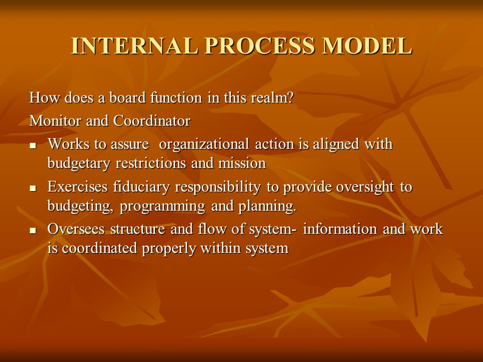 INTERNAL PROCESS MODEL How does a board function in this realm.