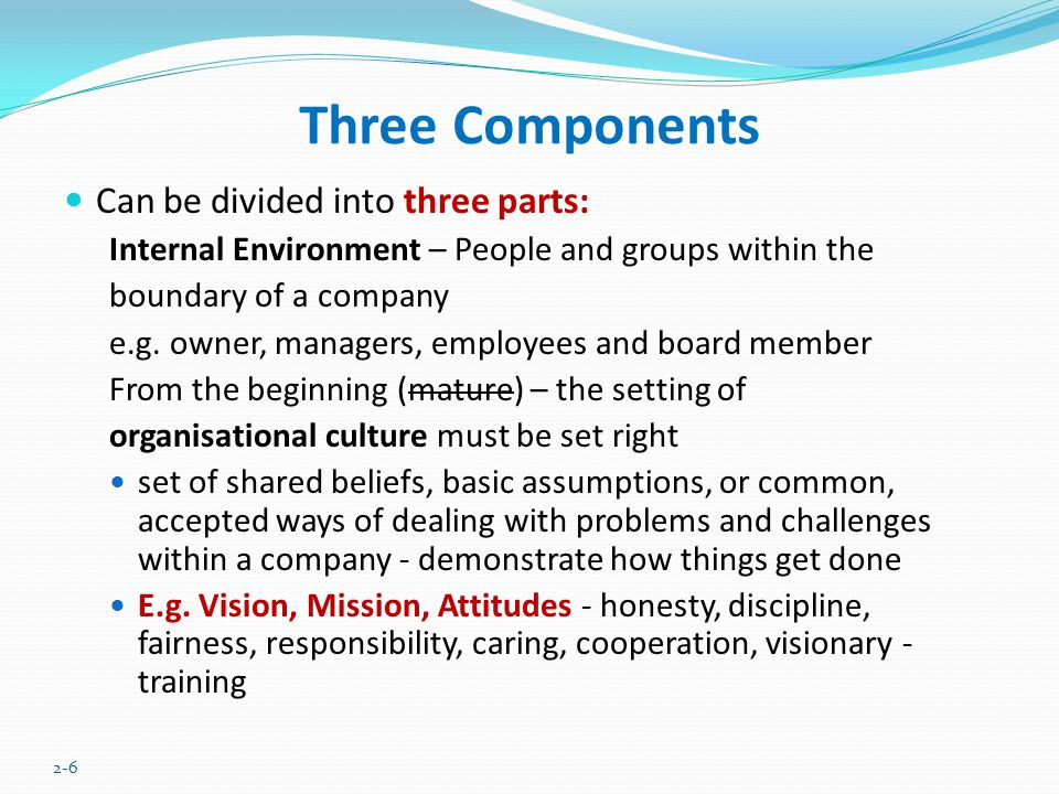 Three Components Can be divided into three parts: Internal Environment – People and groups within the boundary of a company e.g. owner, managers, empl