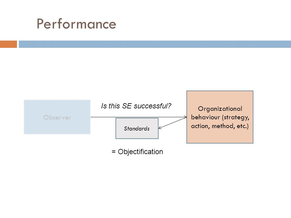 Performance Organizational behaviour (strategy, action, method, etc.) Standards Is this SE successful.