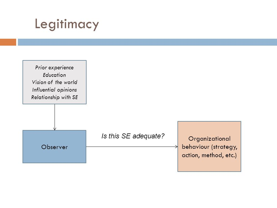 Legitimacy Observer Organizational behaviour (strategy, action, method, etc.) Is this SE adequate.