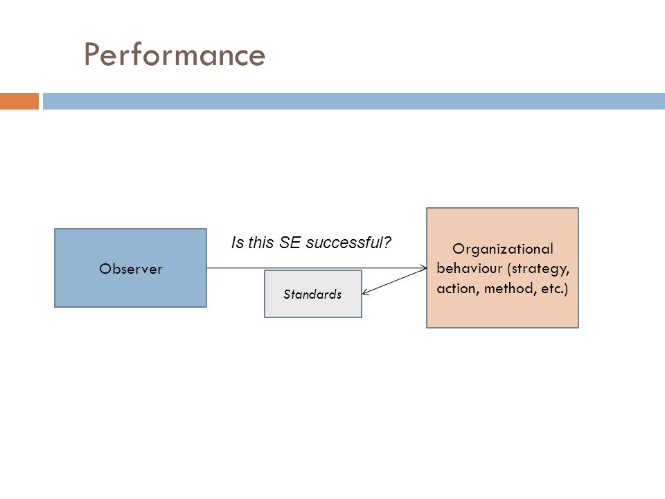 Performance Observer Organizational behaviour (strategy, action, method, etc.) Standards Is this SE successful