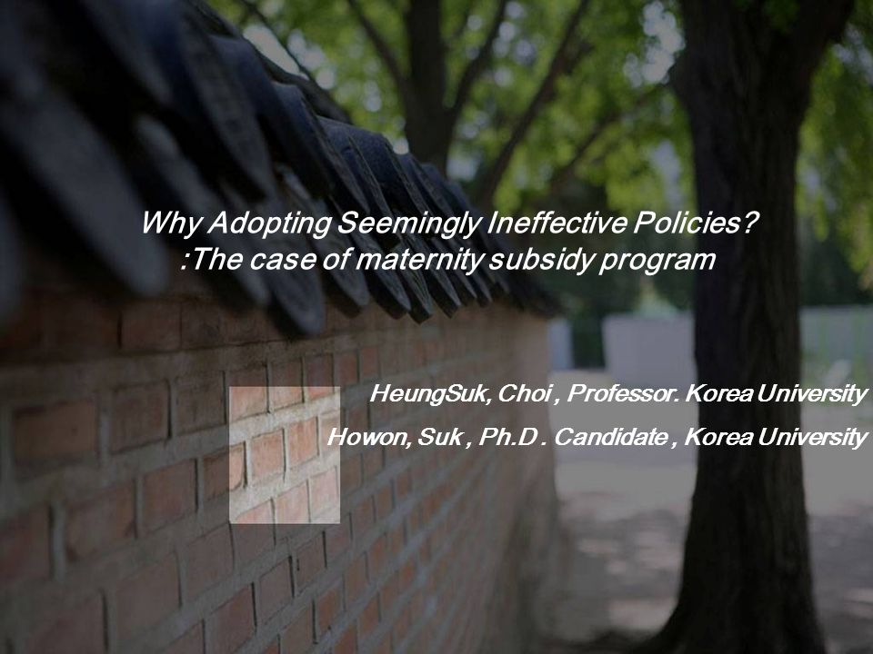 Why Adopting Seemingly Ineffective Policies.