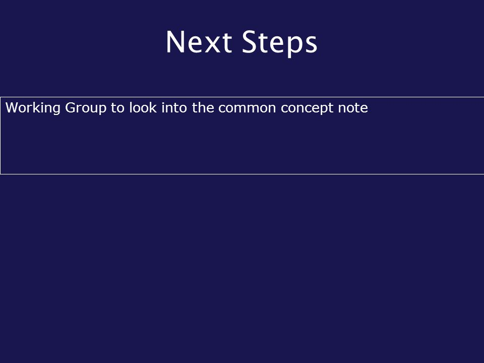 Next Steps Working Group to look into the common concept note