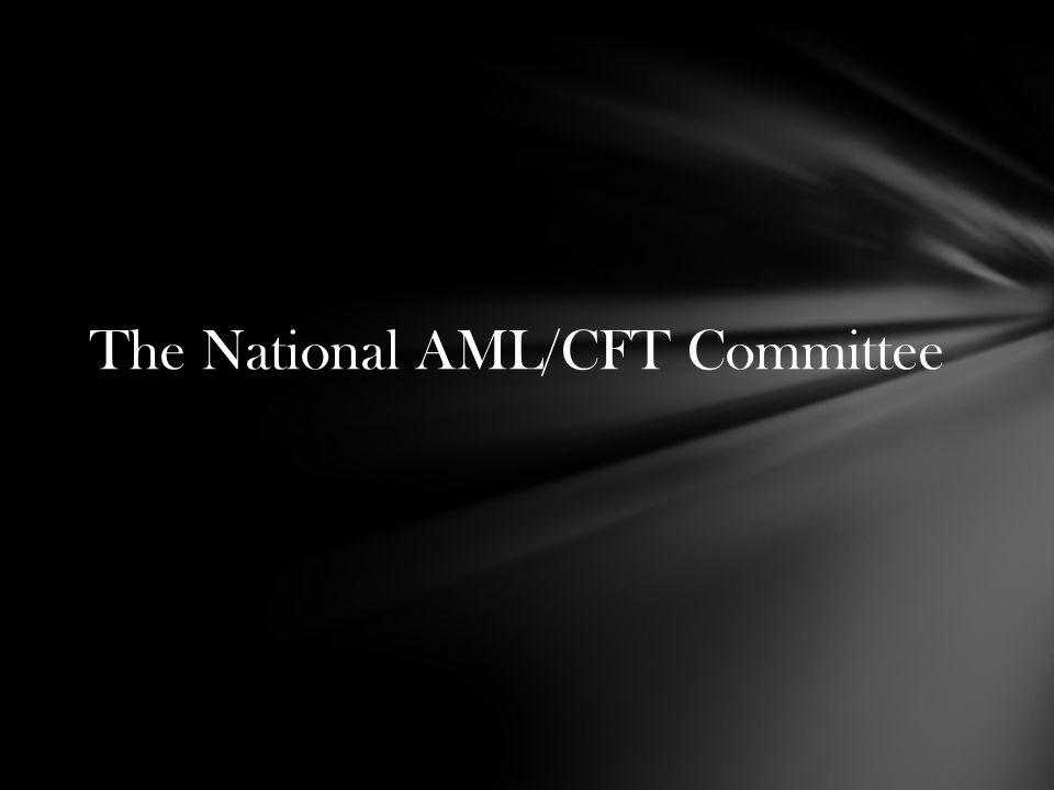 The National AML/CFT Committee