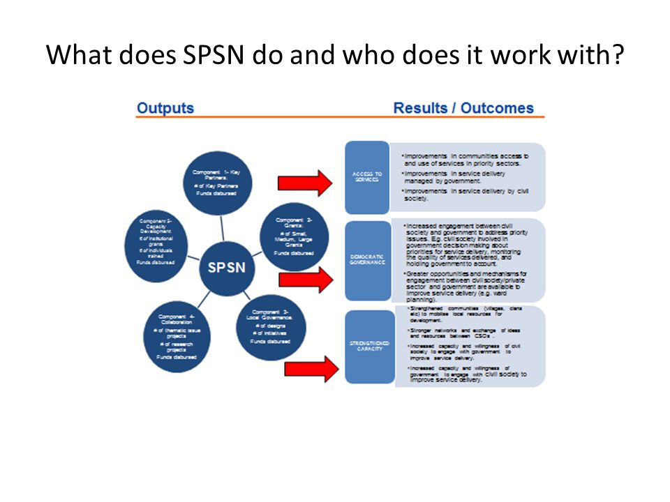 What does SPSN do and who does it work with