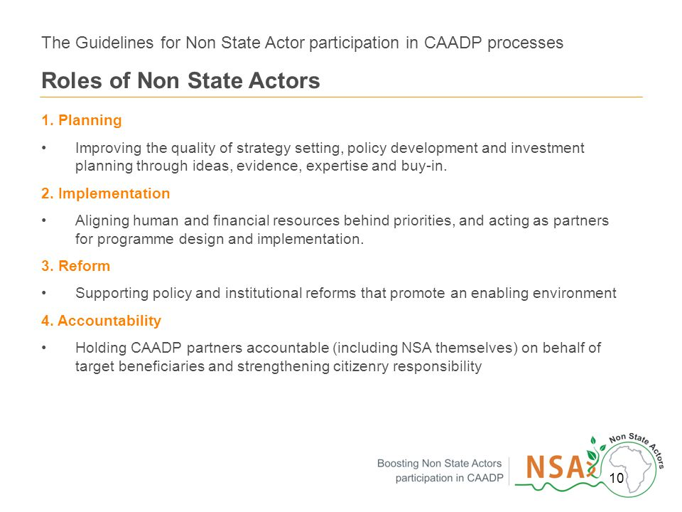 10 The Guidelines for Non State Actor participation in CAADP processes Roles of Non State Actors 1.