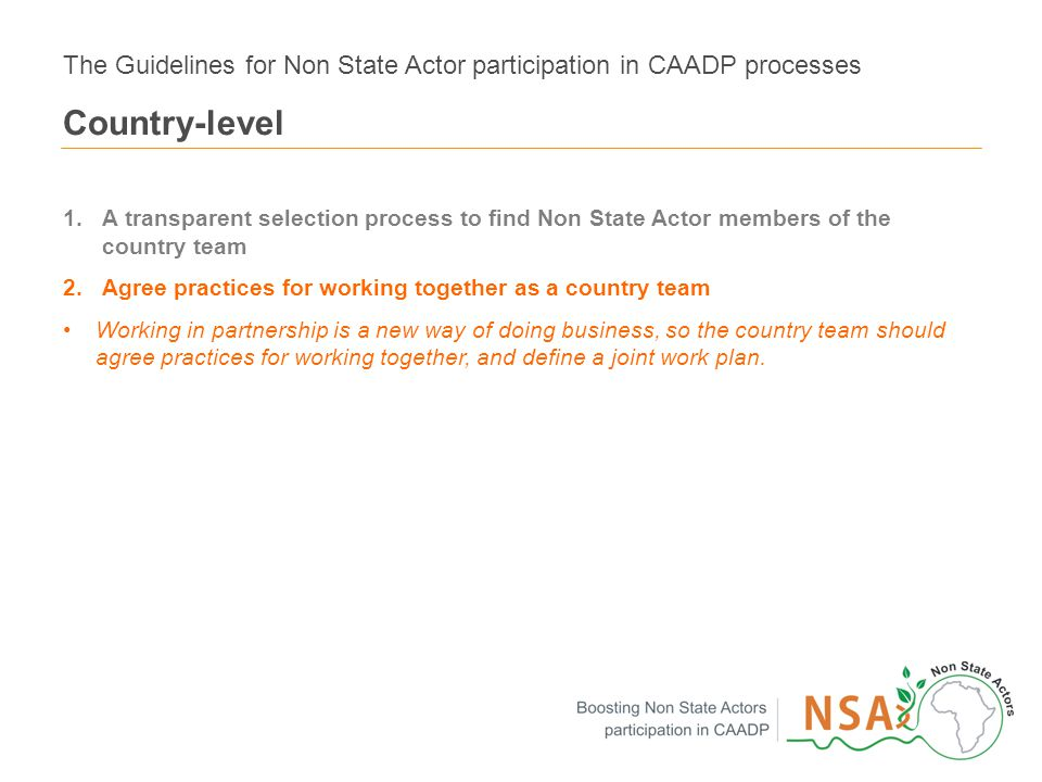 12 1.A transparent selection process to find Non State Actor members of the country team 2.Agree practices for working together as a country team Working in partnership is a new way of doing business, so the country team should agree practices for working together, and define a joint work plan.