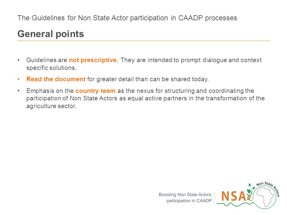 8 The Guidelines for Non State Actor participation in CAADP processes General points Guidelines are not prescriptive.