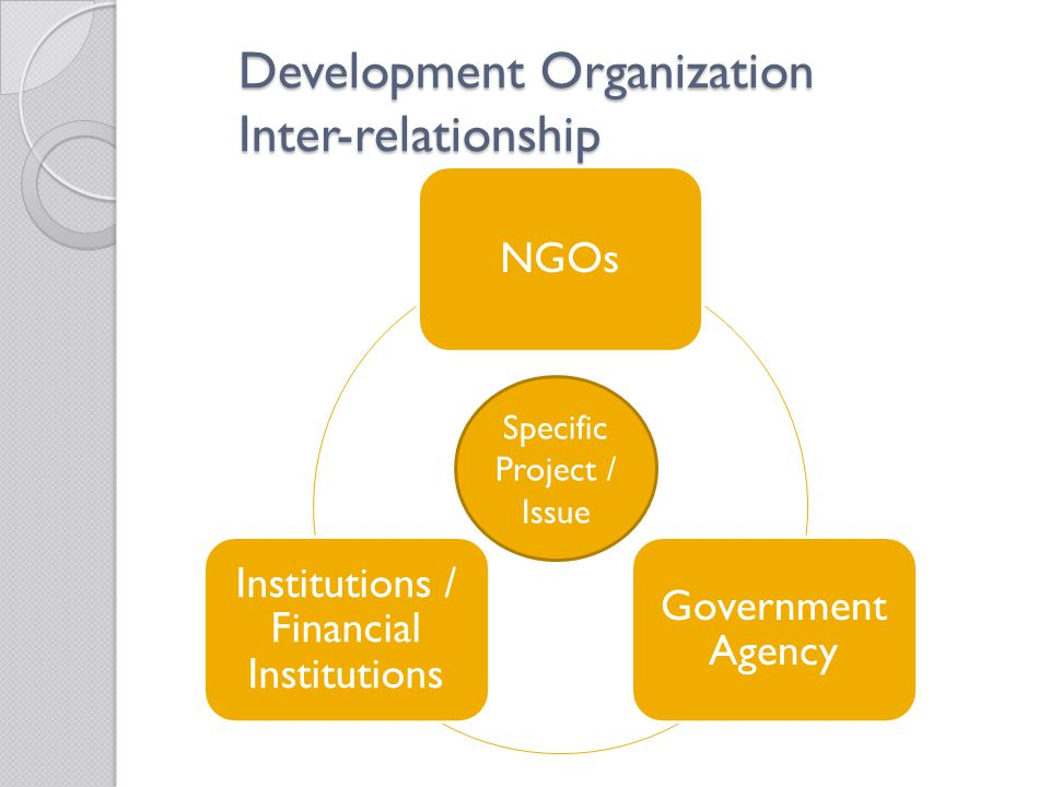 Development Organization Inter-relationship NGOs Government Agency Institutions / Financial Institutions Specific Project / Issue