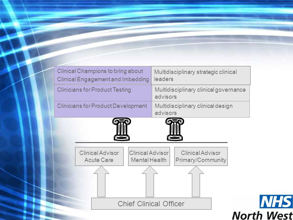 Chief Clinical Officer Clinical Advisor Acute Care Clinical Advisor Mental Health Clinical Advisor Primary/Community Clinicians for Product DevelopmentMultidisciplinary clinical design advisors Clinicians for Product TestingMultidisciplinary clinical governance advisors Clinical Champions to bring about Clinical Engagement and Imbedding Multidisciplinary strategic clinical leaders