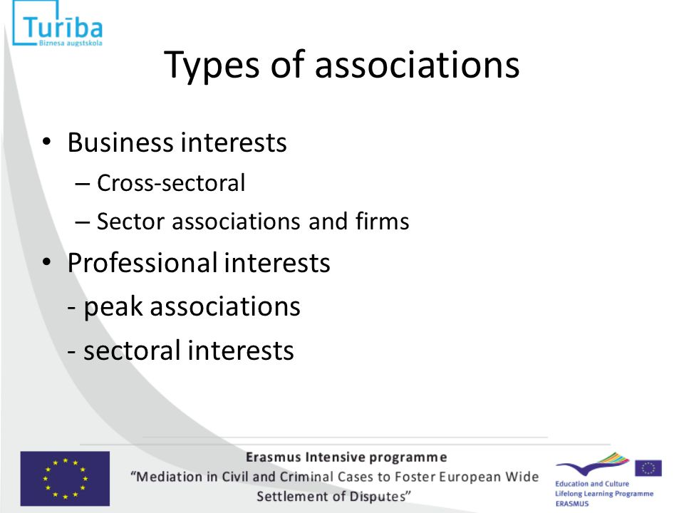 Types of associations Business interests – Cross-sectoral – Sector associations and firms Professional interests - peak associations - sectoral interests