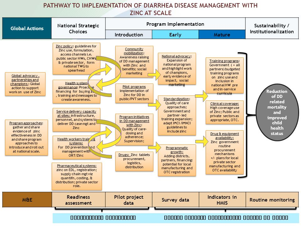 PATHWAY TO IMPLEMENTATION OF DIARRHEA DISEASE MANAGEMENT WITH ZINC AT SCALE Global Actions National Strategic Choices Program Implementation Sustainability / Institutionalization IntroductionEarlyMature Global advocacy, partnerships and champions : Global action to support work on use of Zinc Program approaches: gather and share evidence of zinc effectiveness in DD and share program approaches to introduce and roll out at national scale.